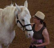 Marlene - Equus Coach