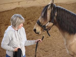 Maureen - Equus Coach